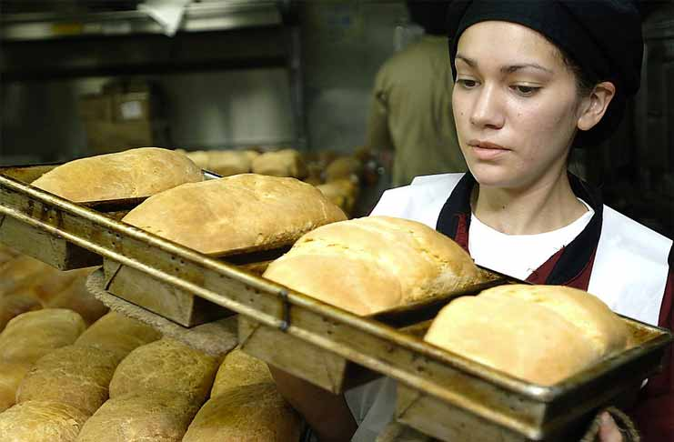 Can You Become a Millionaire by Starting a Bakery Business? Is Pan